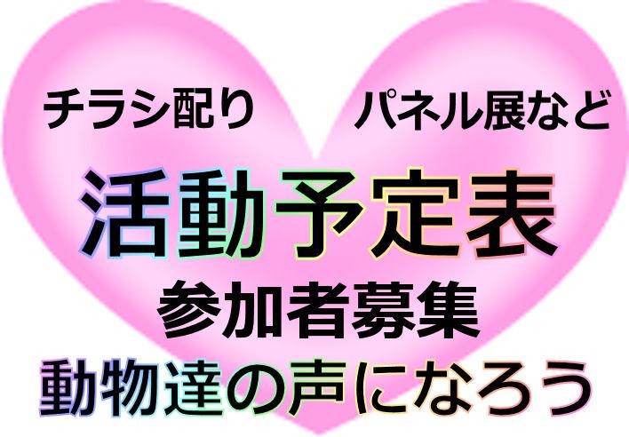 katudou2.jpg