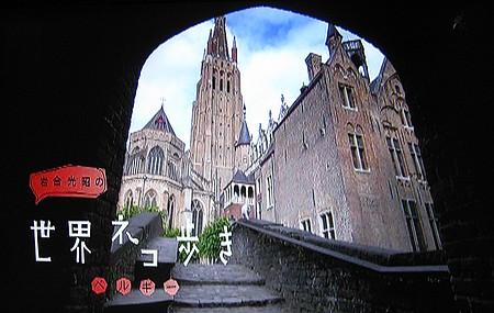 岩合光昭の世界ネコ歩き「ベルギー」