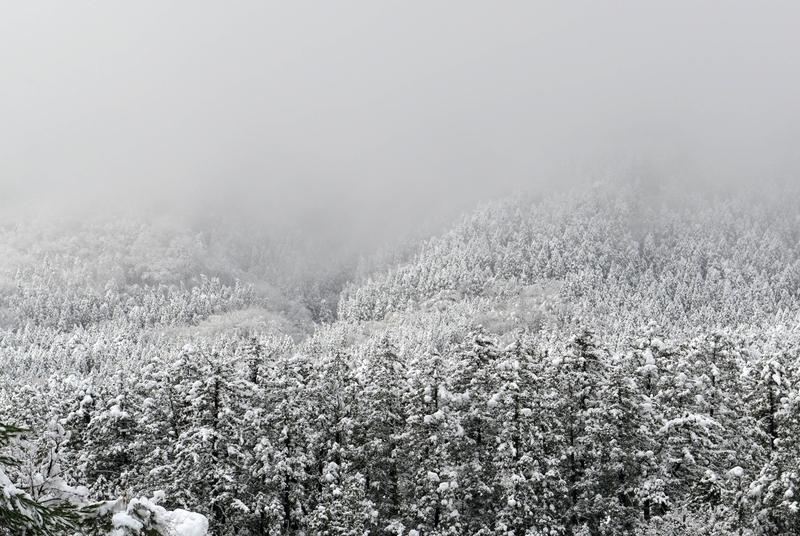 2014-12-06-2.jpg