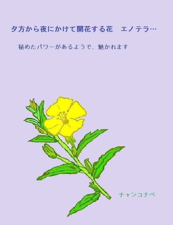 shochumimai-4-2.jpg