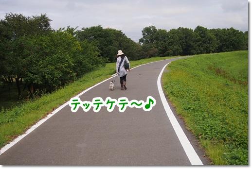 PA060019.jpg