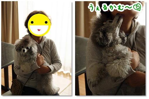 cats_201311032139181c8.jpg