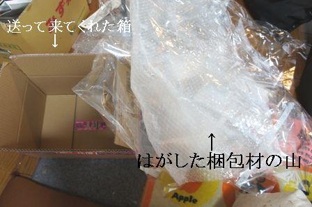DSC07650.jpg
