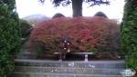 2013-11-11-094510.jpg