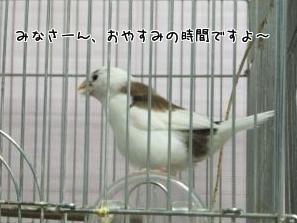 FvLQb9cuLwThfxk1392123024_1392123188.jpg