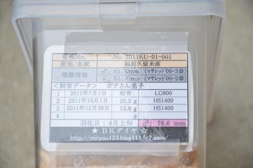 DSC_3192_convert_20121206151530.jpg