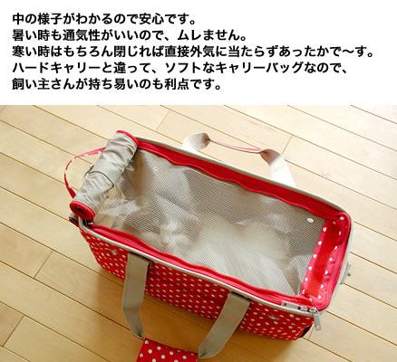 20120502130814cad.jpg