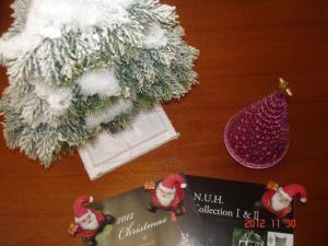 彩か(さいか)のクリスマス