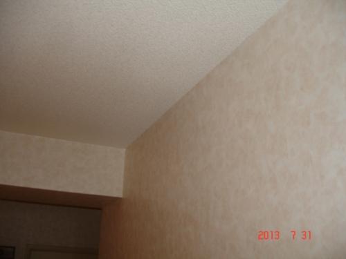 トキワ パインブルTWP7355(天井面)・TWP7567(壁面)