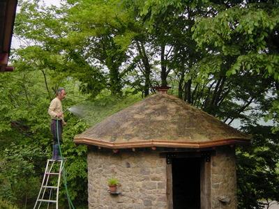 小屋工事、水やり