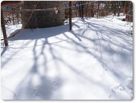 大雪、物干し場