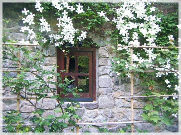 アーチ窓とモンタナ・スノーフレーク