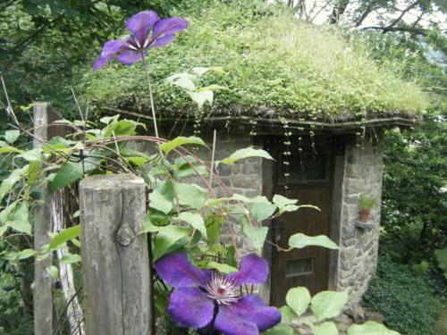 草屋根ボサボサ