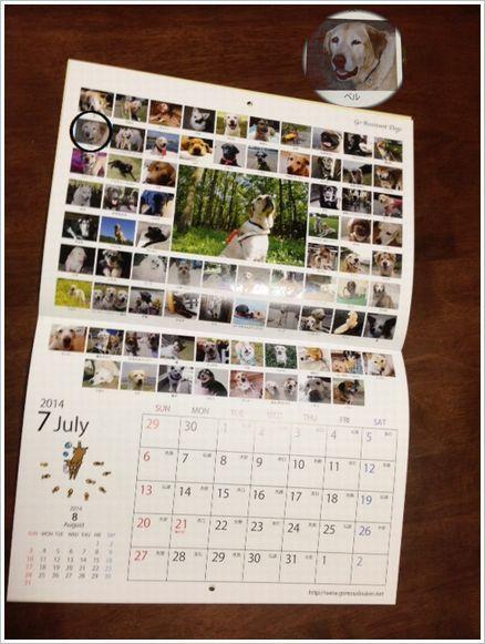2014年 盲導犬・介護犬応援団カレンダー
