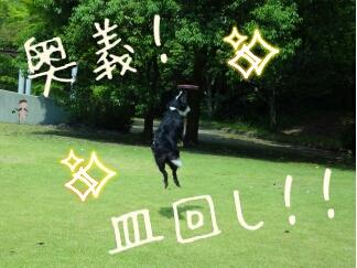 fc2blog_2012092101464923a.jpg