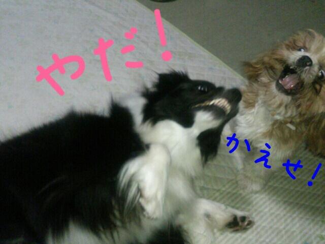 fc2blog_20120927014953f63.jpg