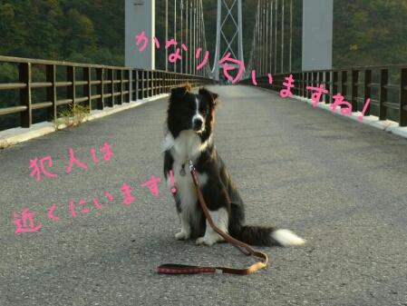 fc2blog_20121102001312911.jpg
