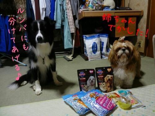 fc2blog_201211052004353c8.jpg