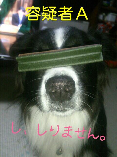 fc2blog_201211150009477eb.jpg