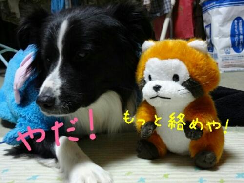 fc2blog_201211170126413fa.jpg