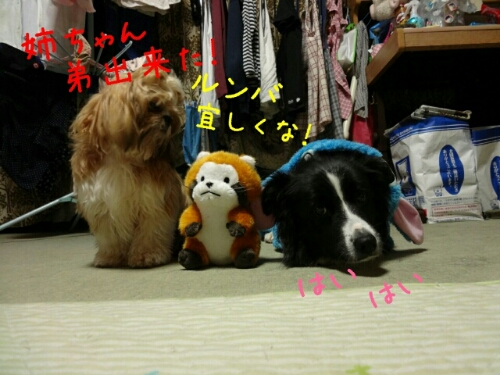 fc2blog_20121117012733f83.jpg