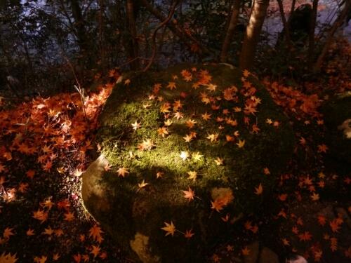 fc2blog_201211180137145c9.jpg