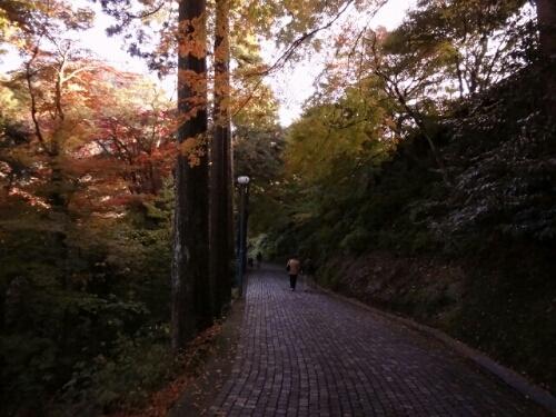 fc2blog_20121118235459f12.jpg