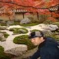 京都のクマ