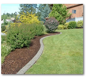 Basic Landscape Edging Options | tufudy on Basic Landscaping  id=54361