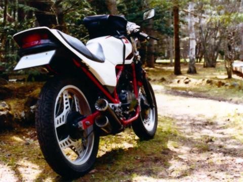 1983HONDA VT250F_R