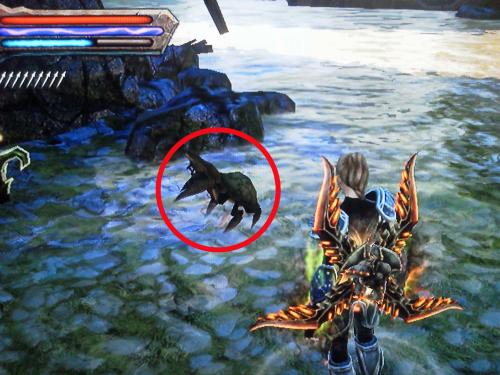 crab_convert_20121028200339.jpg