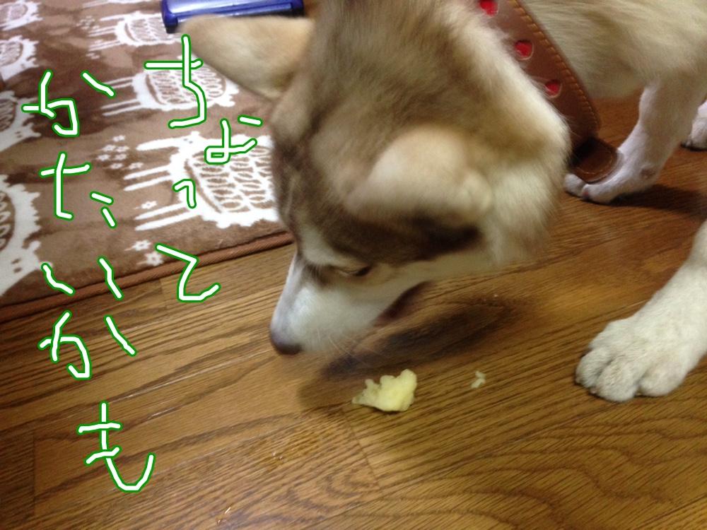 fc2blog_201411192133504a6.jpg