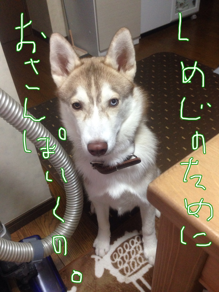 fc2blog_20141126231435997.jpg