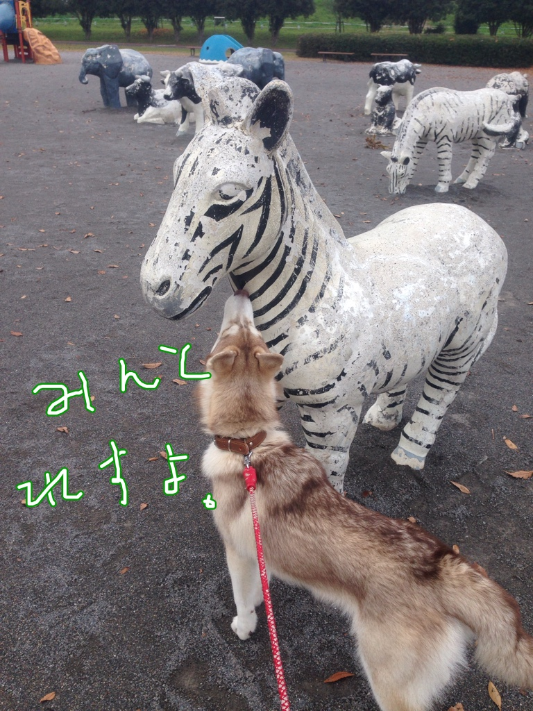 fc2blog_20141128214703892.jpg