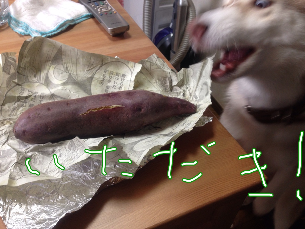 fc2blog_201411301834377b4.jpg