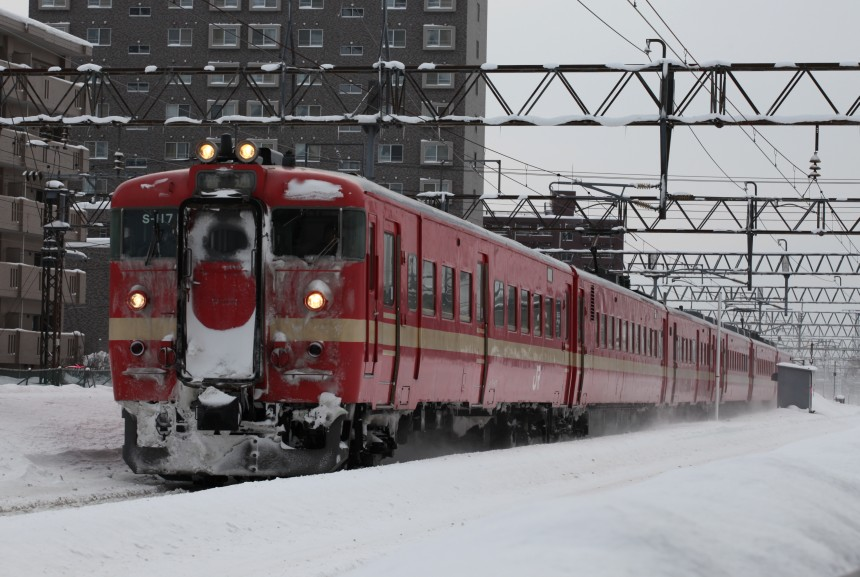 S-117IMG_8418-2.jpg