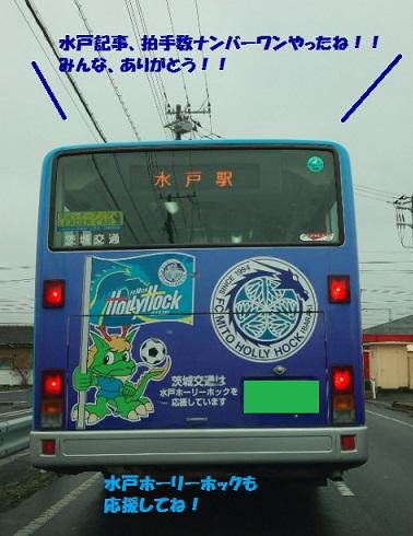 DSC_0181.jpg