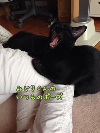 fc2blog_20140118192934a2f.jpg