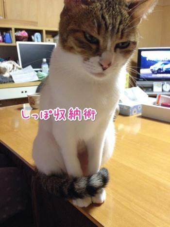 fc2blog_20140118193034de0.jpg