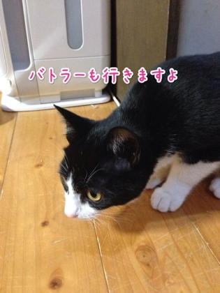 fc2blog_201401252025394df.jpg
