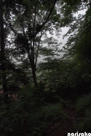 20120806_28.jpg