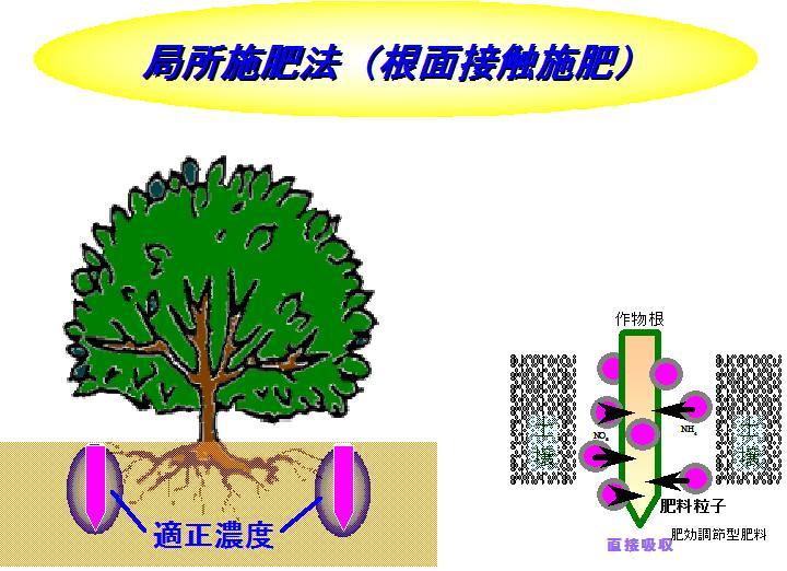20130311205618d29.jpg