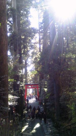 遠足で箱根に行ってきた―