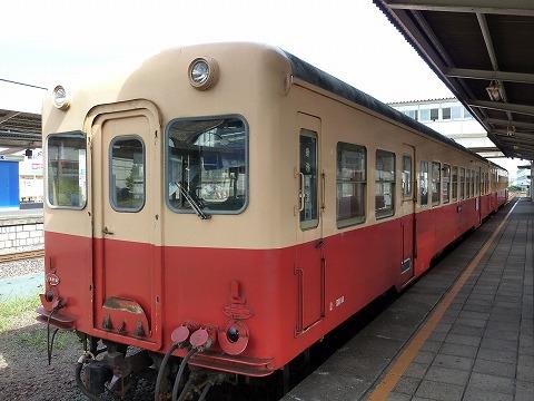P1060075.jpg