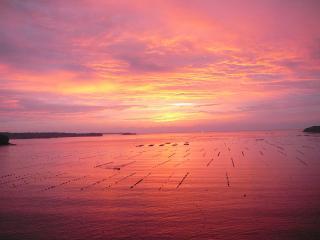 南三陸 志津川湾の朝焼け