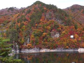 瀬戸合峡の紅葉(川俣湖)