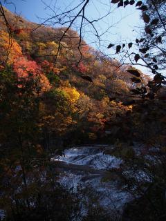 袋田の滝 滝口