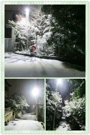 201422yukikora3.jpg