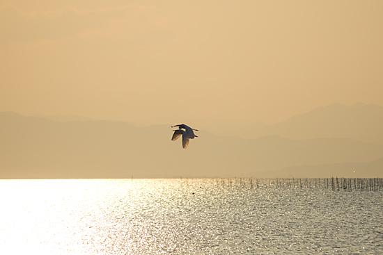 東琵琶湖1-9