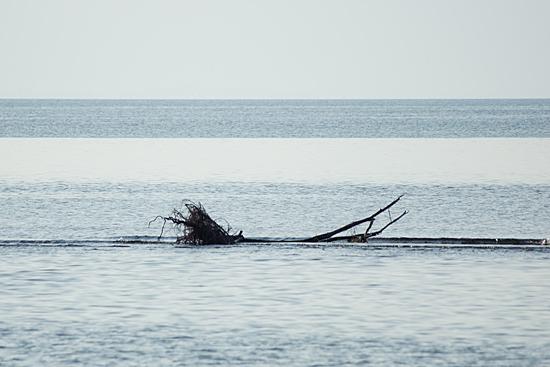 東琵琶湖3-2